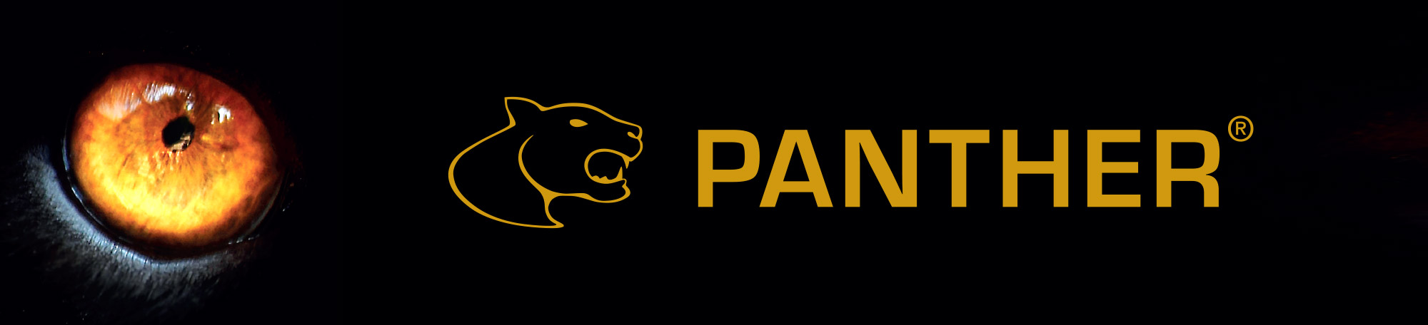 Panther-chainsaw-mills-logo