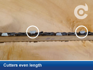 Cutters even length