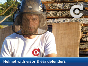 helmet visor ear defenders