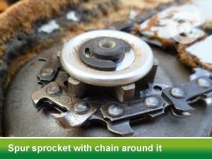 spur sprocket chain around